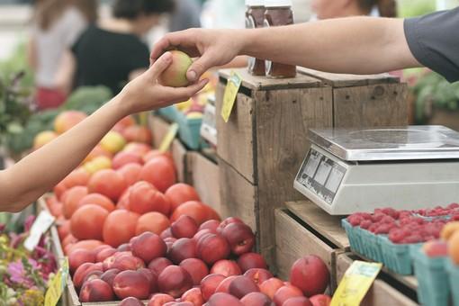 """Arriva il """"Mecà d'na virä """" a Lozzolo, cibo a km 0 dal produttore al consumatore"""
