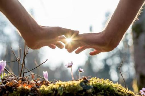 Oggi la Giornata mondiale della Biodiversità. Il bellissimo video di Arpa Piemonte