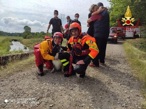 Cane incastrato in uno scolo dell'acqua sotterraneo salvato dai Vigili del Fuoco.