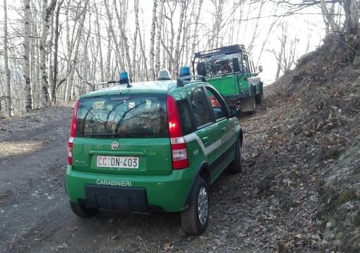 Carabinieri forestali, da mercoledì 8 aprile stato di massima pericolosità incendi boschivi