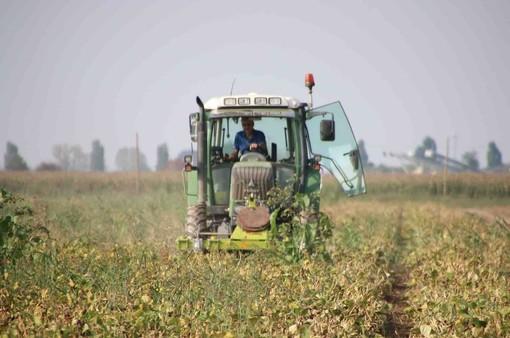 Carburanti agricoli: Confagricoltura chiede di rivedere il sistema delle assegnazioni